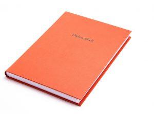 Diplomarbeiten Dissertationen drucken binden Buchbinderei Stundner Habilschriften Masterthesis Bachelorarbeiten kleinauflagen Bücher VWA Maturaarbeiten (6)