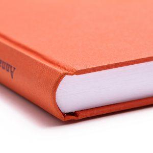 dissertation 01 hardcover diplomarbeit habilschrift bachelorarbeiten mastertesis vorwissenschaftliche arbeiten vwa buchbinderei stundner salzburg